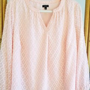 Talbots pale pink swiss dot blouse